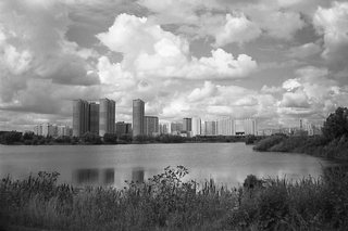 black and white summer city landscape